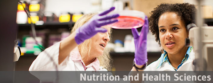 Nutrition and Health Sciences option
