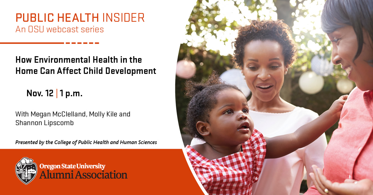 Does Your Home Pass the Test? How Environmental Health in the Home Can Affect Child Development